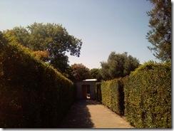 Hamilton Gardens 011